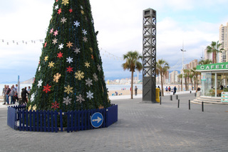 Xmas tree at Rincon