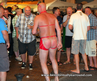 red thonged stag